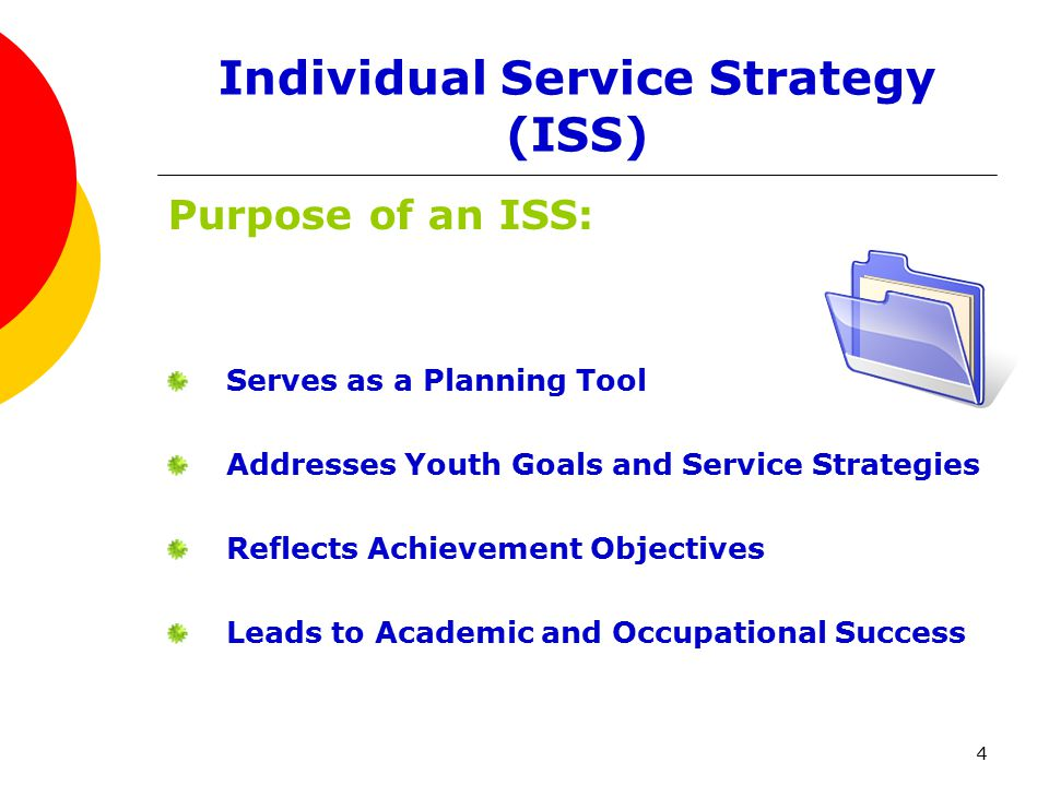 5 Individual Service Strategy ISS Characteristics should include: Identifying Information Summary of Assessment Information Measurable Short-term and Long-term Goals Services and Other Resources Needed Organizations and/or Individuals that will provide services & Resources Tasks and Responsibilities of the Youth, Case Manger, Family Members and Others.