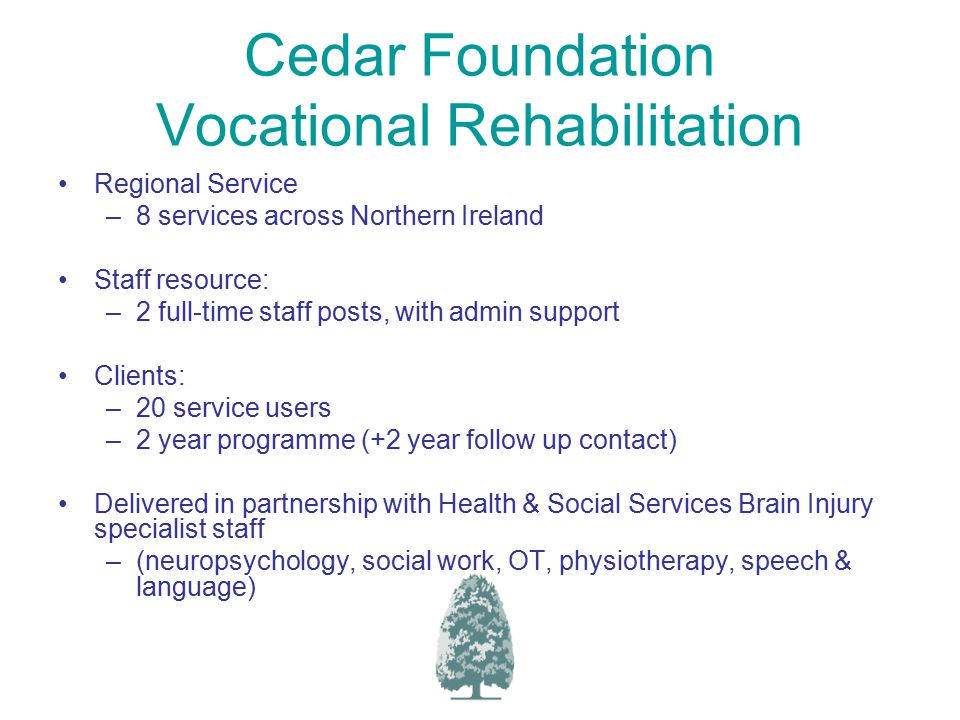 Cedar Foundation Vocational Rehabilitation Regional Service –8 services across Northern Ireland Staff resource: –2 full-time staff posts, with admin support Clients: –20 service users –2 year programme (+2 year follow up contact) Delivered in partnership with Health & Social Services Brain Injury specialist staff –(neuropsychology, social work, OT, physiotherapy, speech & language)
