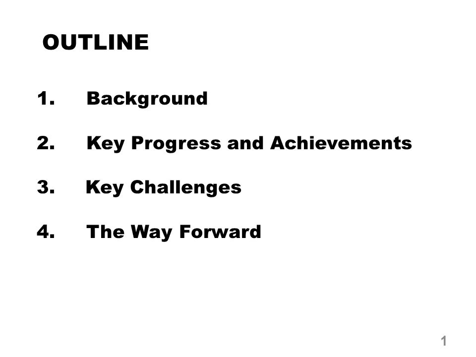 OUTLINE 1. Background 2. Key Progress and Achievements 3. Key Challenges 4. The Way Forward 1