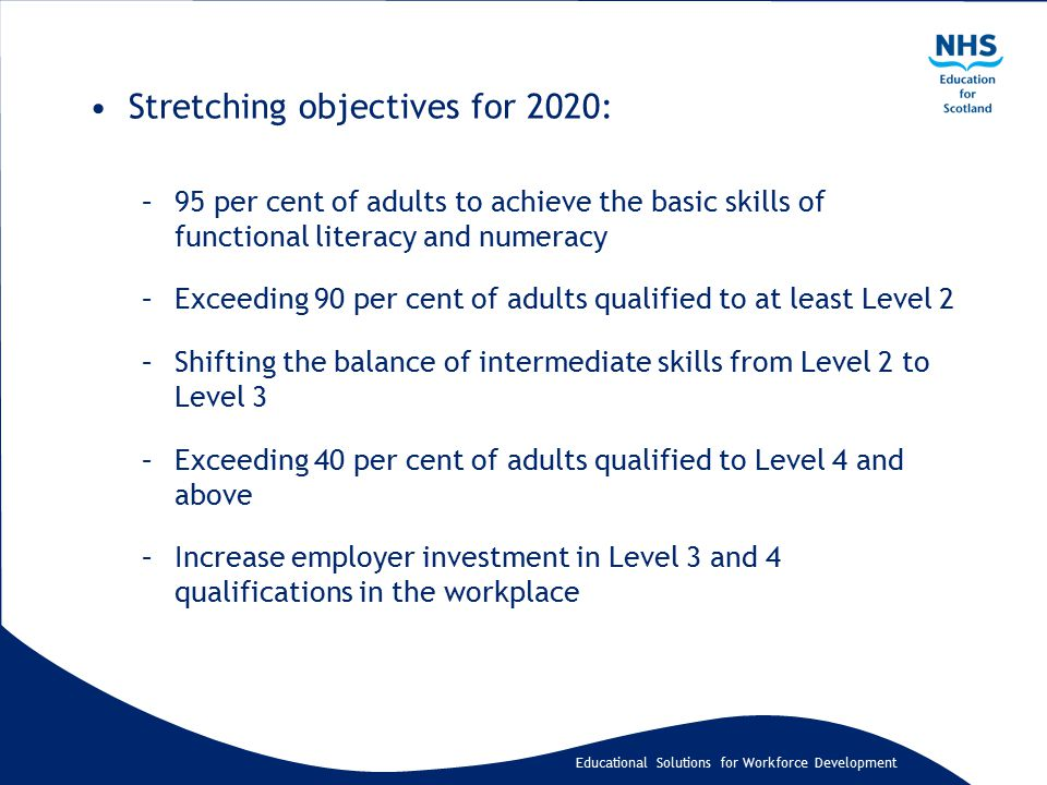 Educational Solutions for Workforce Development Stretching objectives for 2020: –95 per cent of adults to achieve the basic skills of functional liter