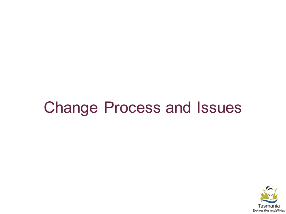 Change Process and Issues