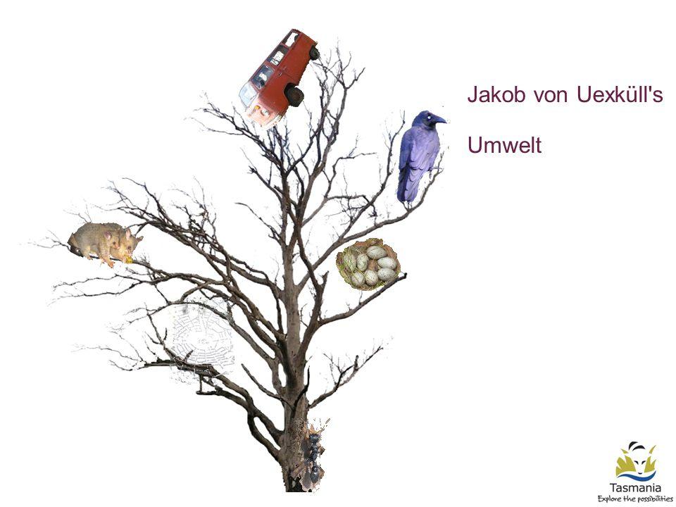 Jakob von Uexküll s Umwelt