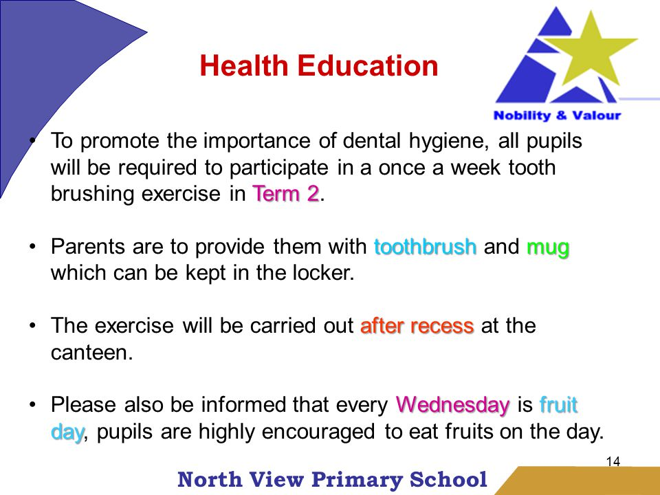 North View Primary School 14 Health Education Term 2To promote the importance of dental hygiene, all pupils will be required to participate in a once a week tooth brushing exercise in Term 2.