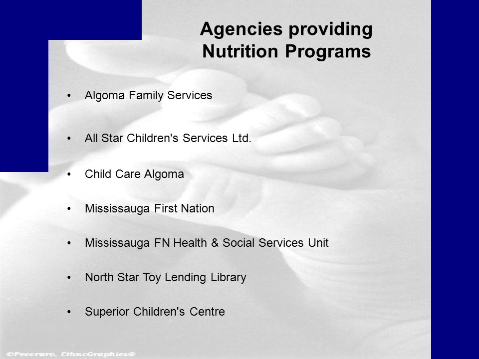 Agencies providing Nutrition Programs Algoma Family Services All Star Children s Services Ltd.