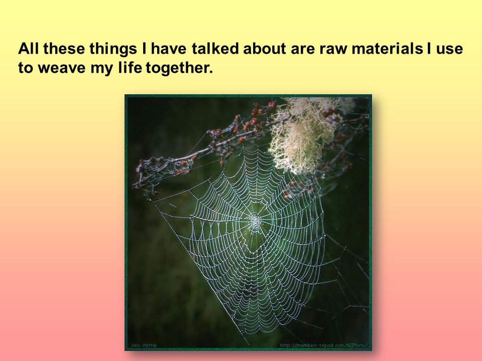All these things I have talked about are raw materials I use to weave my life together.