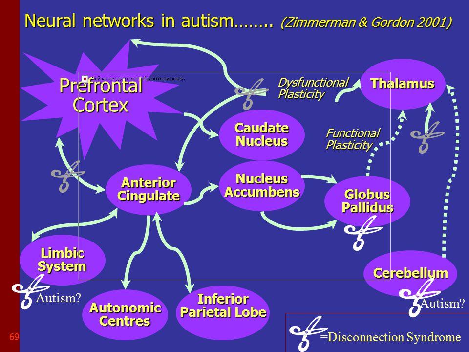 68 Entorhinal cortex….