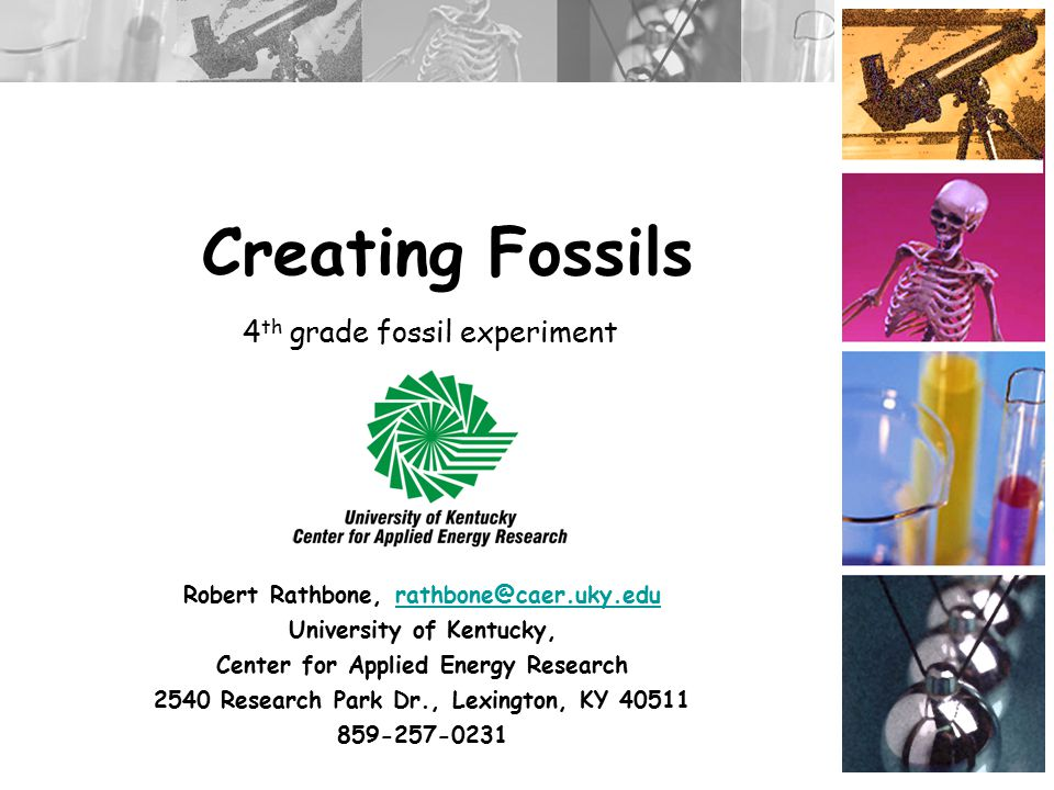 Creating Fossils Robert Rathbone, rathbone@caer.uky.edurathbone@caer.uky.edu University of Kentucky, Center for Applied Energy Research 2540 Research Park Dr., Lexington, KY 40511 859-257-0231 4 th grade fossil experiment