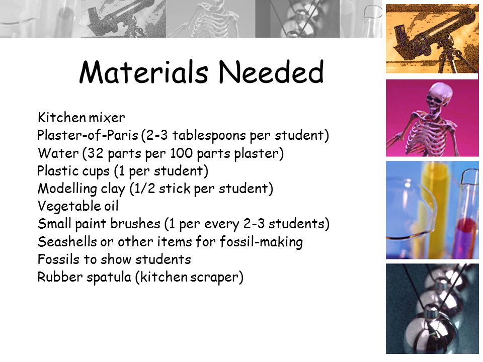 Materials Needed Kitchen mixer Plaster-of-Paris (2-3 tablespoons per student) Water (32 parts per 100 parts plaster) Plastic cups (1 per student) Modelling clay (1/2 stick per student) Vegetable oil Small paint brushes (1 per every 2-3 students) Seashells or other items for fossil-making Fossils to show students Rubber spatula (kitchen scraper)
