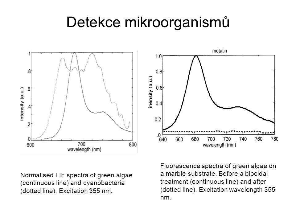 Detekce mikroorganismů Fluorescence spectra of green algae on a marble substrate.