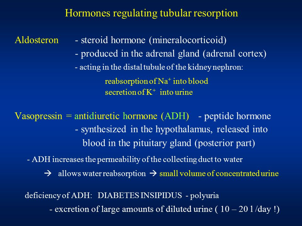 Hormones regulating tubular resorption Aldosteron- steroid hormone (mineralocorticoid) - produced in the adrenal gland (adrenal cortex) - acting in th