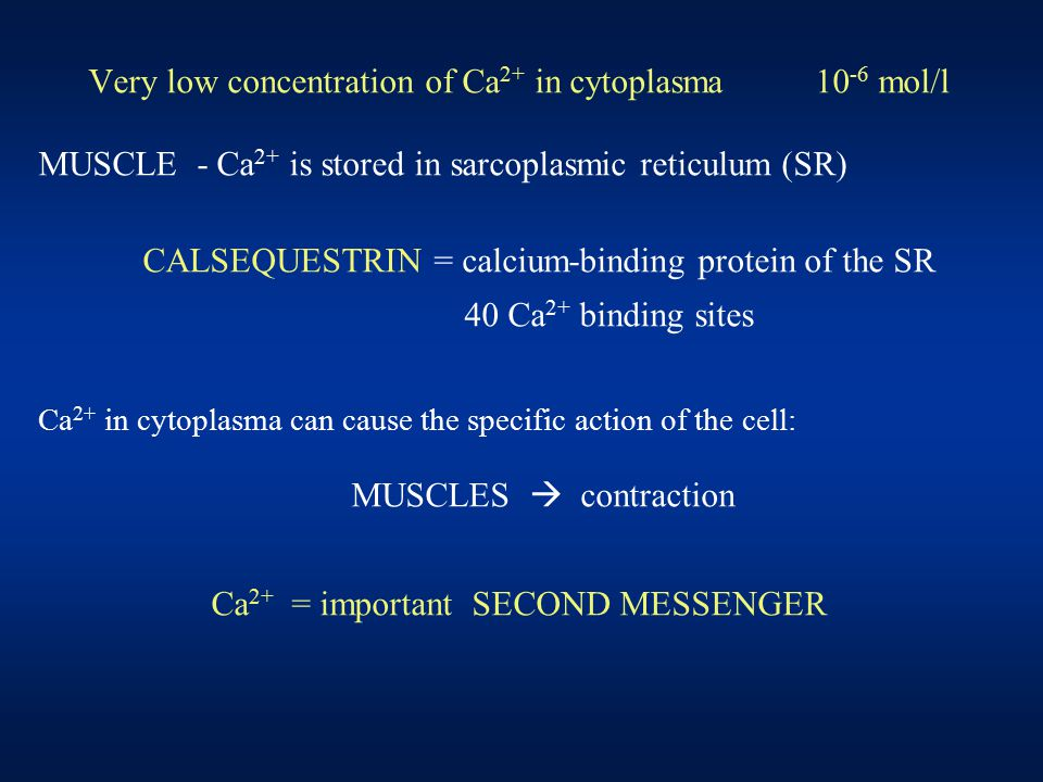 Very low concentration of Ca 2+ in cytoplasma 10 -6 mol/l MUSCLE - Ca 2+ is stored in sarcoplasmic reticulum (SR) CALSEQUESTRIN = calcium-binding prot