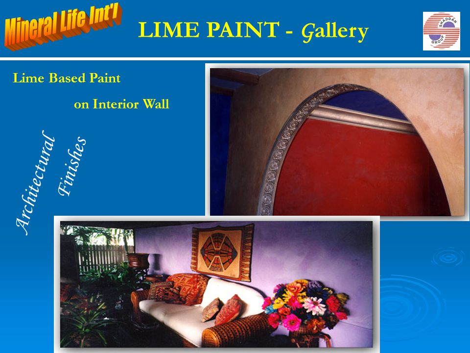 Architectural Finishes LIME PAINT - G allery Lime Based Paint on Interior Wall