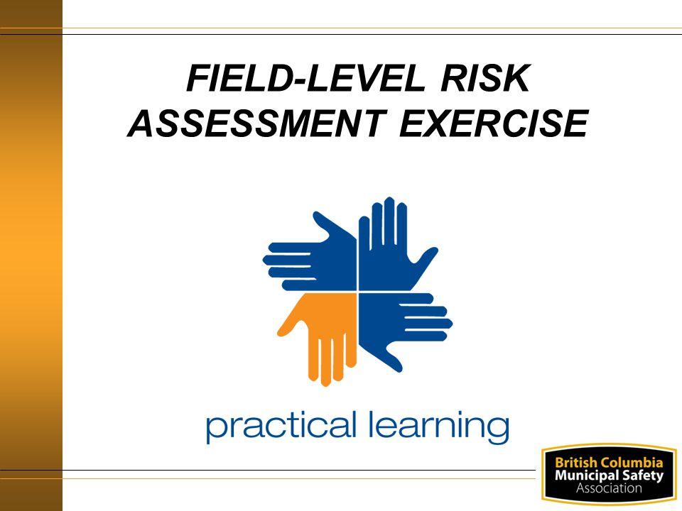 FIELD-LEVEL RISK ASSESSMENT EXERCISE