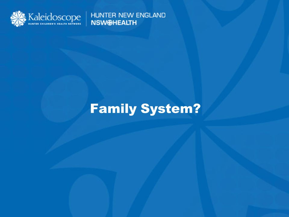 28 Family System