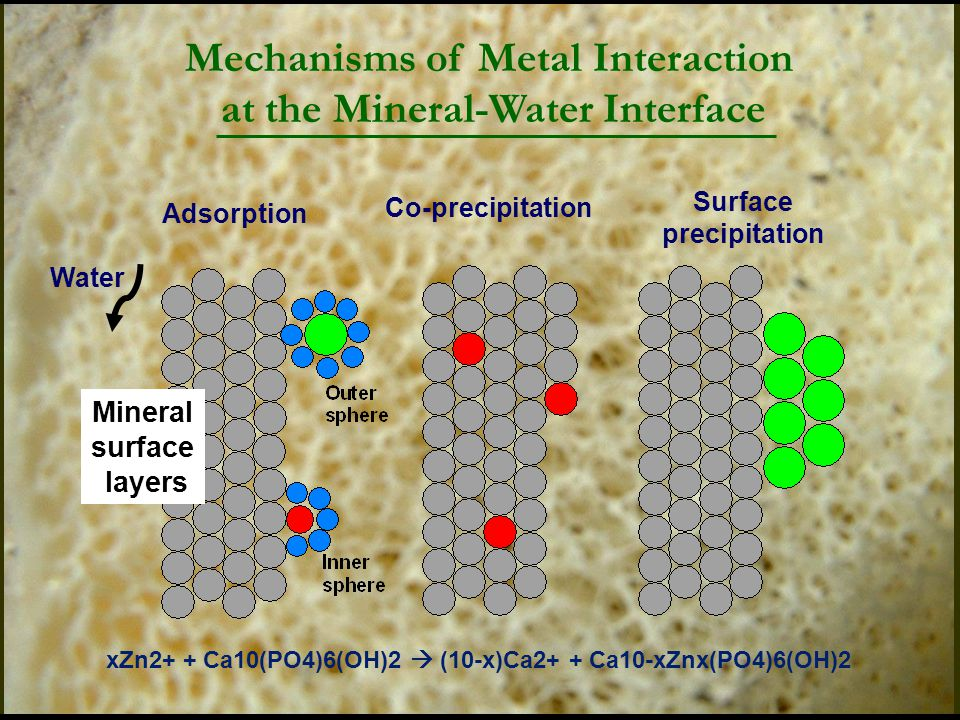 Mineral surface layers Water Adsorption Co-precipitation Surface precipitation Mechanisms of Metal Interaction at the Mineral-Water Interface xZn2+ + Ca10(PO4)6(OH)2  (10-x)Ca2+ + Ca10-xZnx(PO4)6(OH)2