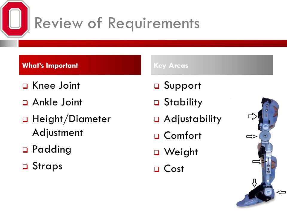 Review of Requirements What's Important  Knee Joint  Ankle Joint  Height/Diameter Adjustment  Padding  Straps Key Areas  Support  Stability  Adjustability  Comfort  Weight  Cost