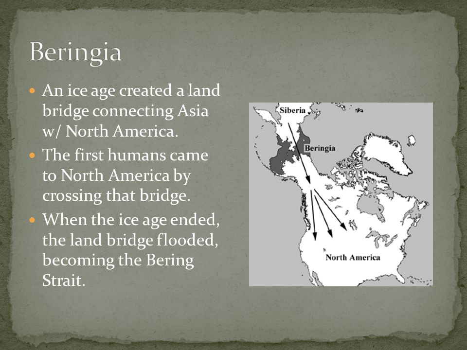 An ice age created a land bridge connecting Asia w/ North America.