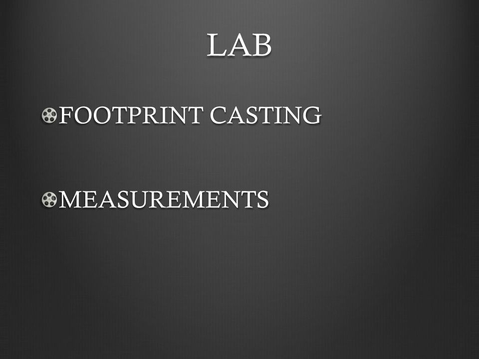 LAB FOOTPRINT CASTING MEASUREMENTS