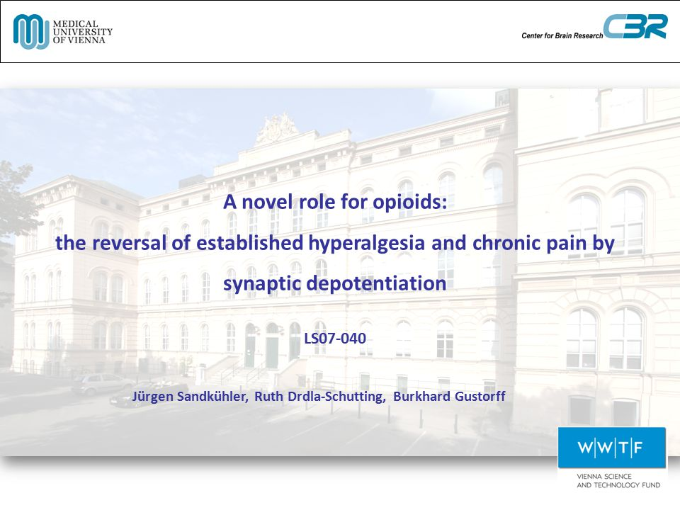 A novel role for opioids: the reversal of established hyperalgesia and chronic pain by synaptic depotentiation Jürgen Sandkühler, Ruth Drdla-Schutting, Burkhard Gustorff Thank you for your attention!