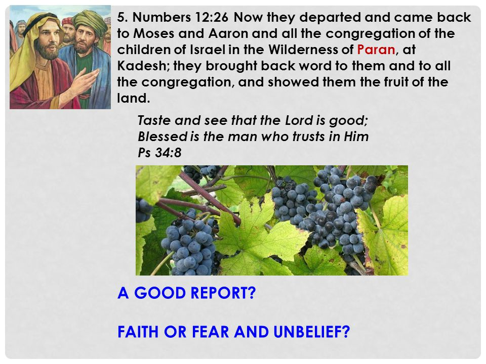 5. Numbers 12:26 Now they departed and came back to Moses and Aaron and all the congregation of the children of Israel in the Wilderness of Paran, at