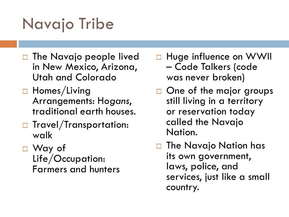 Navajo Tribe  The Navajo people lived in New Mexico, Arizona, Utah and Colorado  Homes/Living Arrangements: Hogans, traditional earth houses.