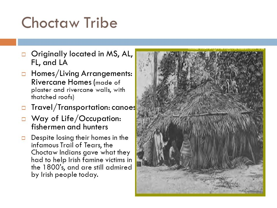 Choctaw Tribe  Originally located in MS, AL, FL, and LA  Homes/Living Arrangements: Rivercane Homes ( made of plaster and rivercane walls, with thatched roofs)  Travel/Transportation: canoes  Way of Life/Occupation: fishermen and hunters  Despite losing their homes in the infamous Trail of Tears, the Choctaw Indians gave what they had to help Irish famine victims in the 1800 s, and are still admired by Irish people today.
