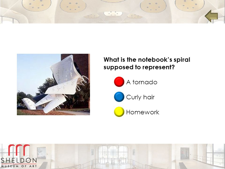 What is the notebook's spiral supposed to represent? A tornado Curly hair Homework