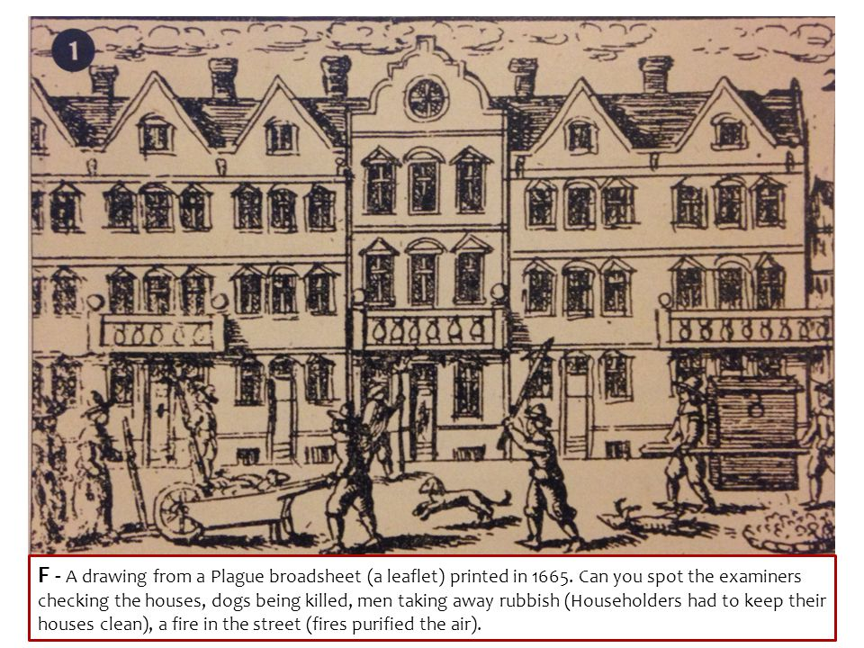 F - A drawing from a Plague broadsheet (a leaflet) printed in 1665. Can you spot the examiners checking the houses, dogs being killed, men taking away