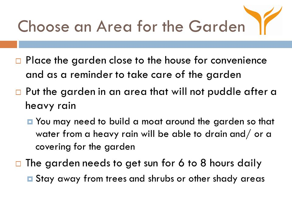 Choose an Area for the Garden  Place the garden close to the house for convenience and as a reminder to take care of the garden  Put the garden in an area that will not puddle after a heavy rain  You may need to build a moat around the garden so that water from a heavy rain will be able to drain and/ or a covering for the garden  The garden needs to get sun for 6 to 8 hours daily  Stay away from trees and shrubs or other shady areas