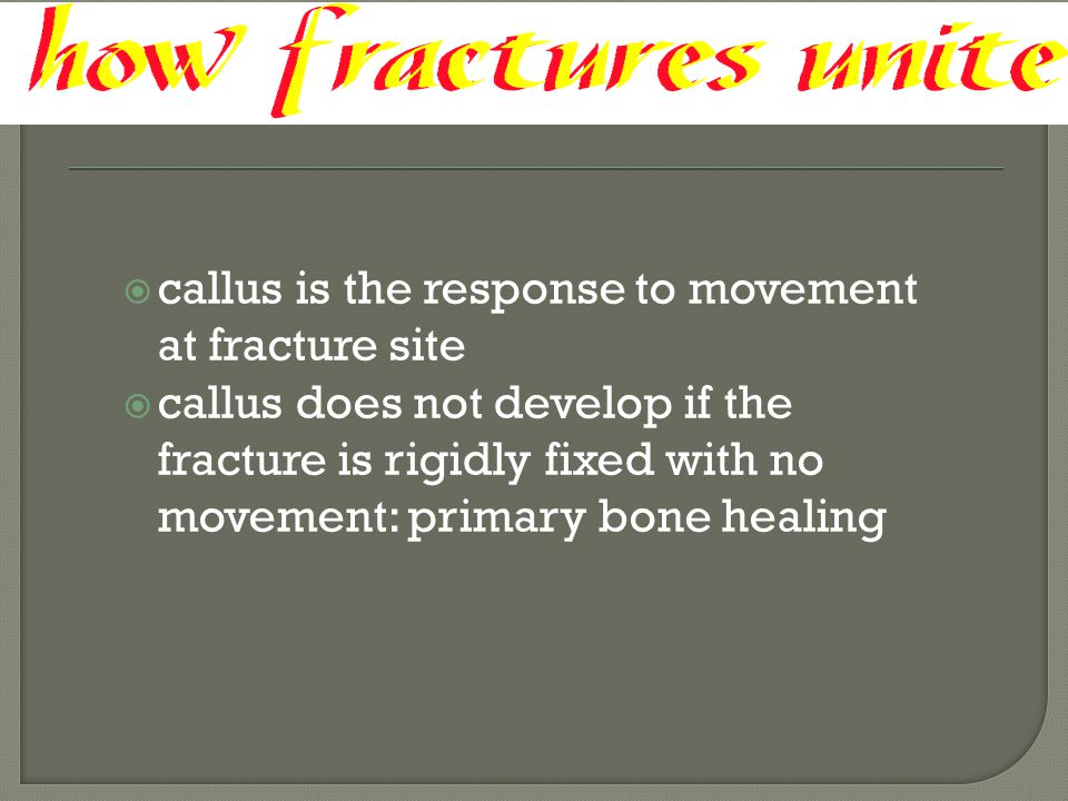  callus is the response to movement at fracture site  callus does not develop if the fracture is rigidly fixed with no movement: primary bone healin