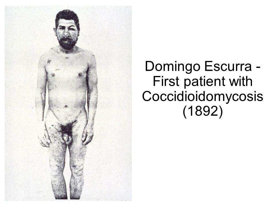 Domingo Escurra