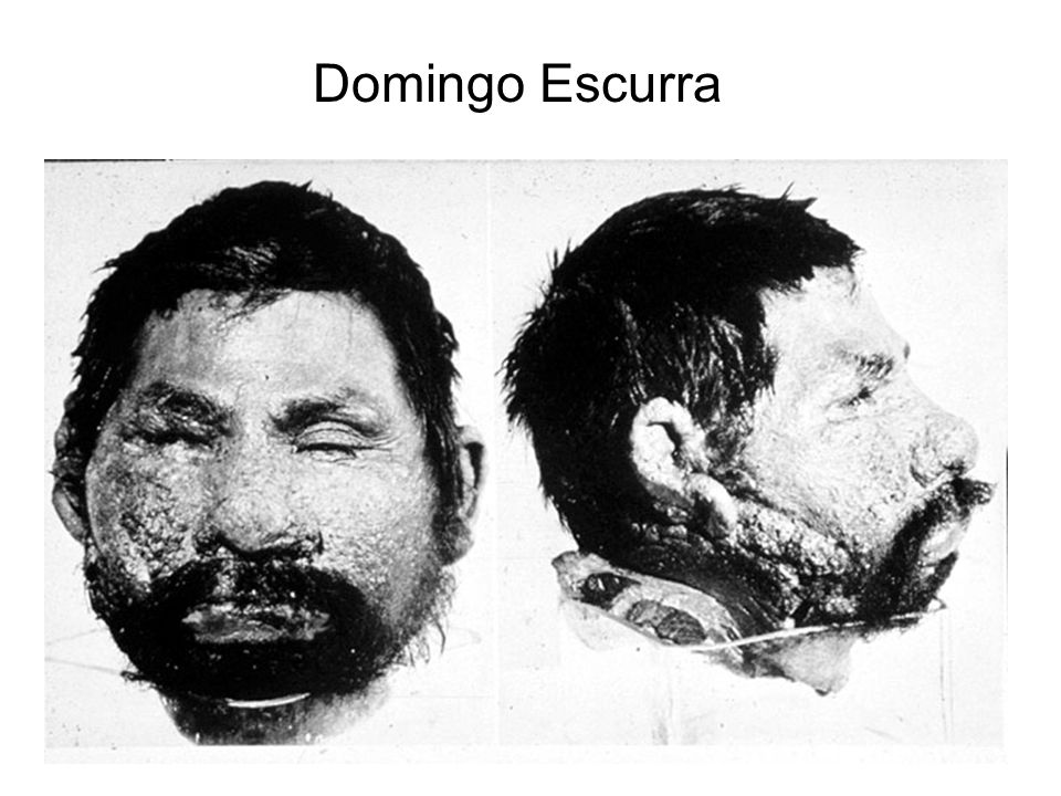 Domingo Escurra