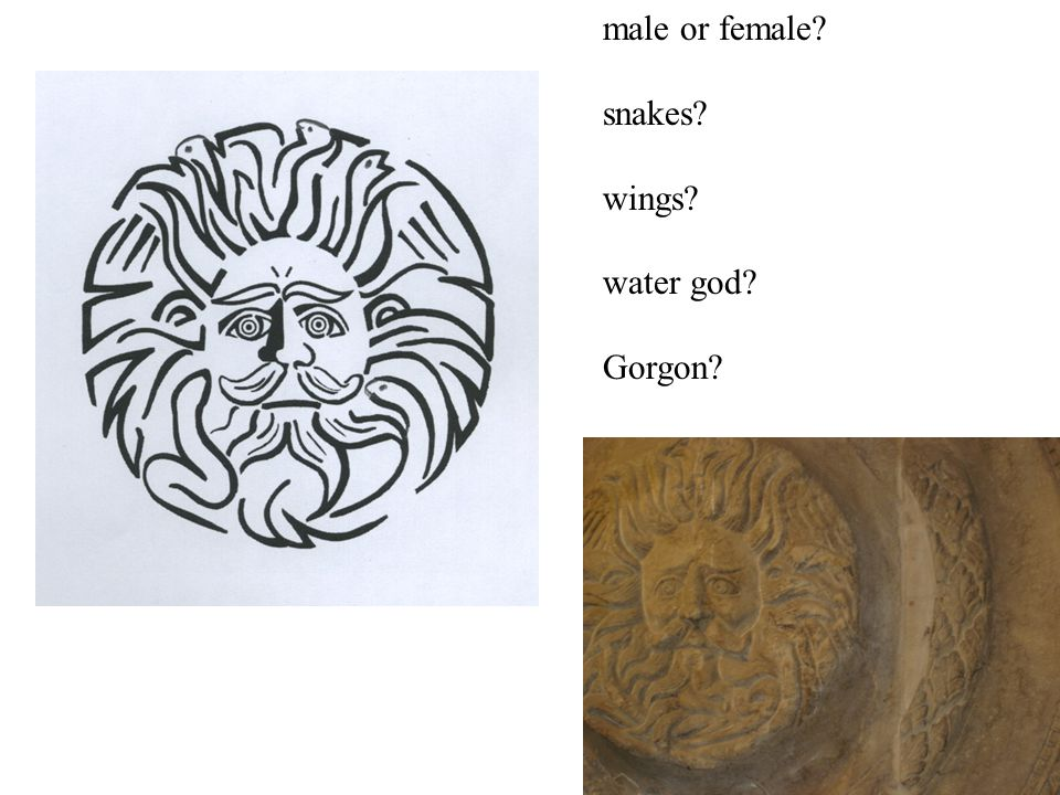 male or female? snakes? wings? water god? Gorgon?