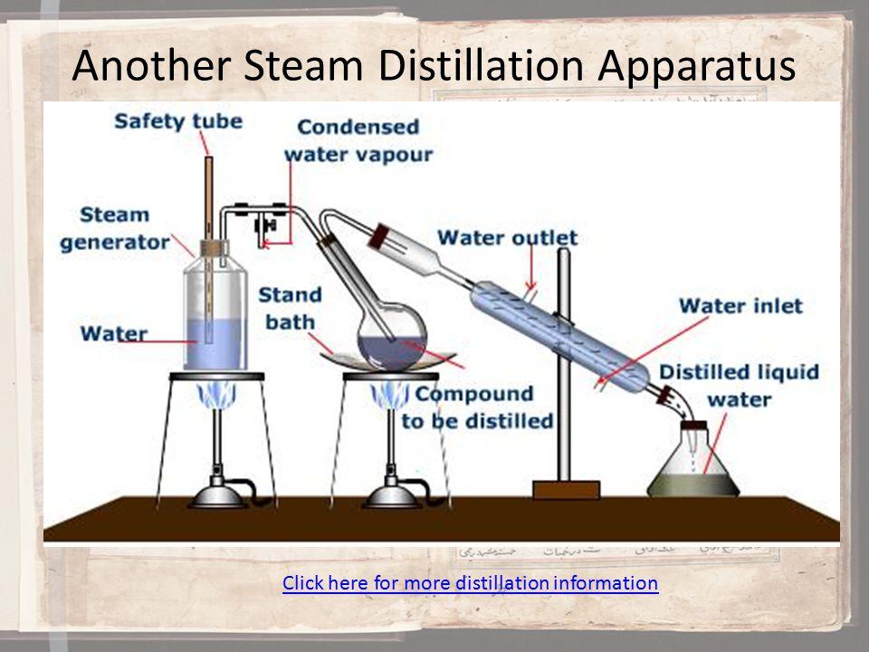 Steam Distillation of Essential Oils Process
