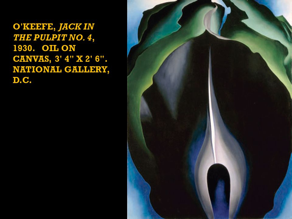 O KEEFE, JACK IN THE PULPIT NO. 4, 1930. OIL ON CANVAS, 3 4 X 2 6 . NATIONAL GALLERY, D.C.