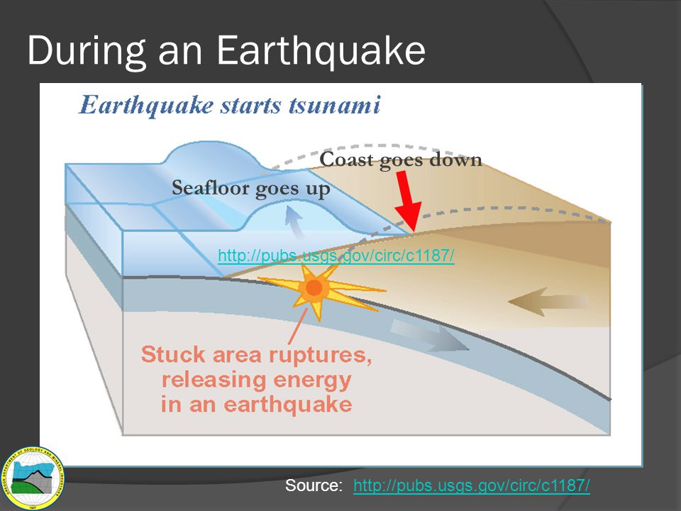 During an Earthquake Coast goes down Seafloor goes up Source: http://pubs.usgs.gov/circ/c1187/http://pubs.usgs.gov/circ/c1187/