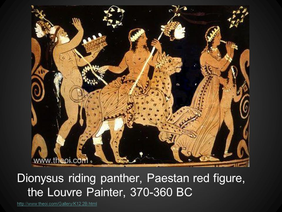 Dionysus riding panther, Paestan red figure, the Louvre Painter, 370-360 BC http://www.theoi.com/Gallery/K12.2B.html