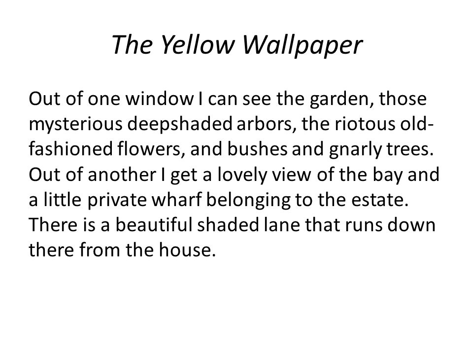 Out of one window I can see the garden, those mysterious deepshaded arbors, the riotous old- fashioned flowers, and bushes and gnarly trees. Out of an