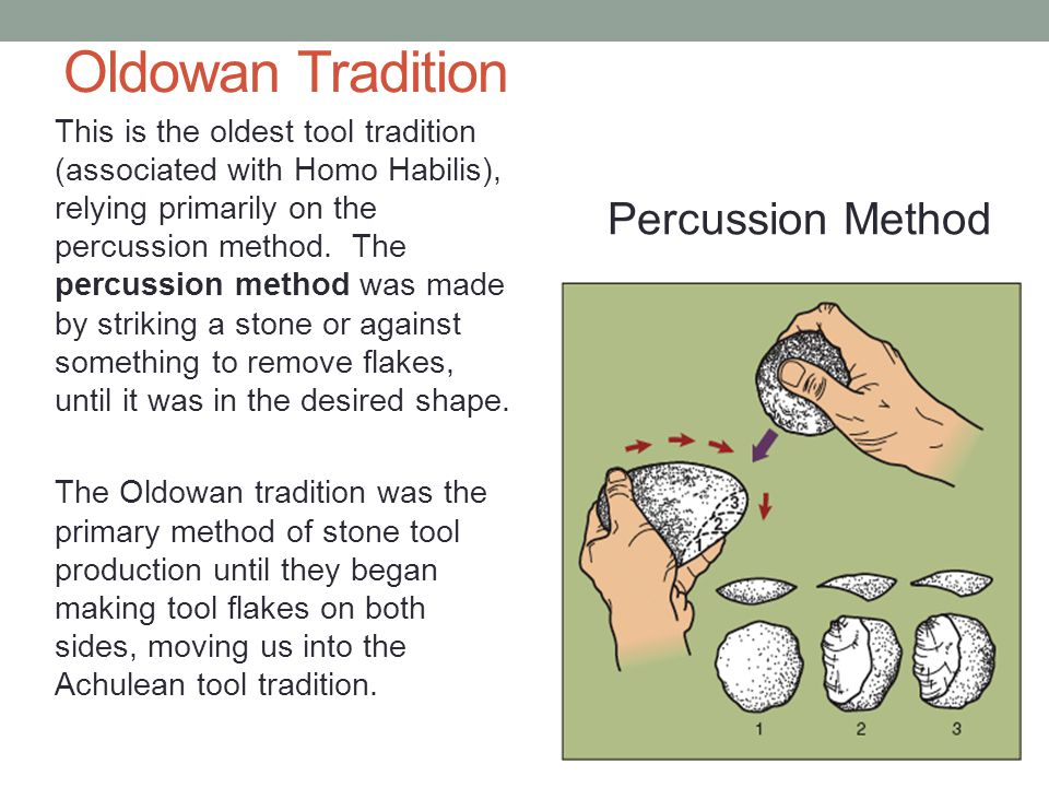 Oldowan Tradition This is the oldest tool tradition (associated with Homo Habilis), relying primarily on the percussion method.