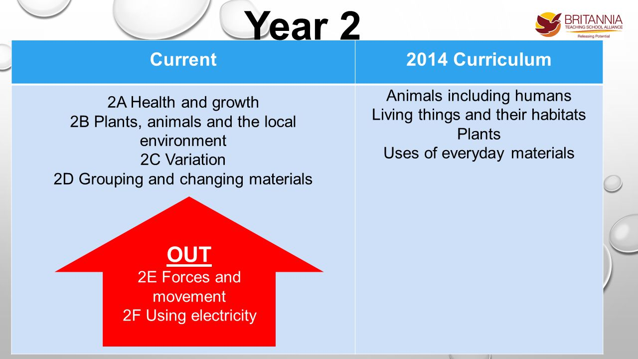 Current2014 Curriculum 2A Health and growth 2B Plants, animals and the local environment 2C Variation 2D Grouping and changing materials Animals including humans Living things and their habitats Plants Uses of everyday materials Year 2 OUT 2E Forces and movement 2F Using electricity