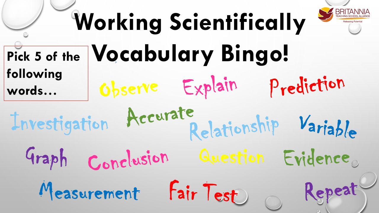 Working Scientifically Vocabulary Bingo.