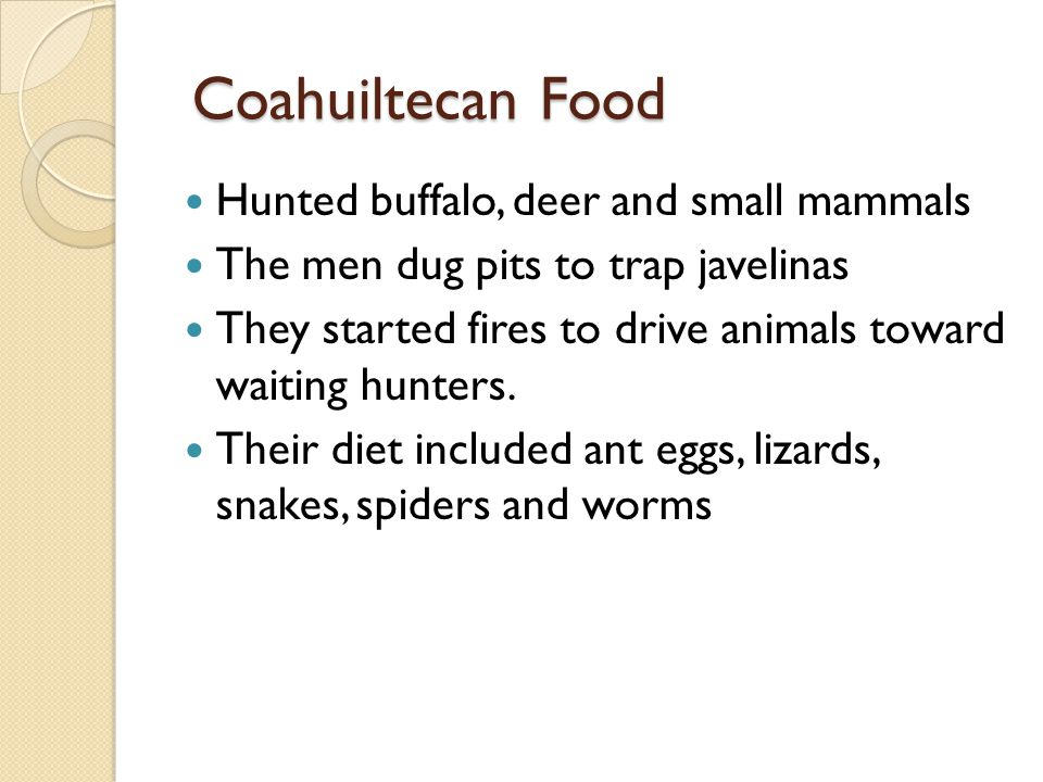 Coahuiltecan Food Coahuiltecan Food Hunted buffalo, deer and small mammals The men dug pits to trap javelinas They started fires to drive animals towa