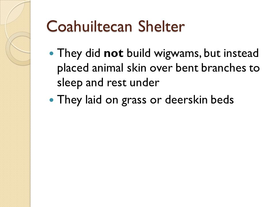 Coahuiltecan Shelter They did not build wigwams, but instead placed animal skin over bent branches to sleep and rest under They laid on grass or deerskin beds