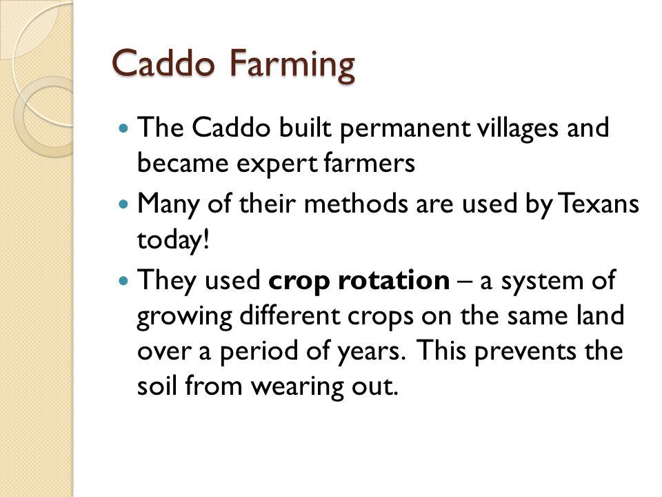 Caddo Farming The Caddo built permanent villages and became expert farmers Many of their methods are used by Texans today.
