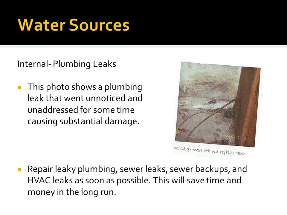  Repair leaky plumbing, sewer leaks, sewer backups, and HVAC leaks as soon as possible. This will save time and money in the long run. Internal- Plum
