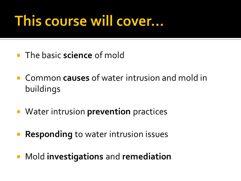  The basic science of mold  Common causes of water intrusion and mold in buildings  Water intrusion prevention practices  Responding to water intr