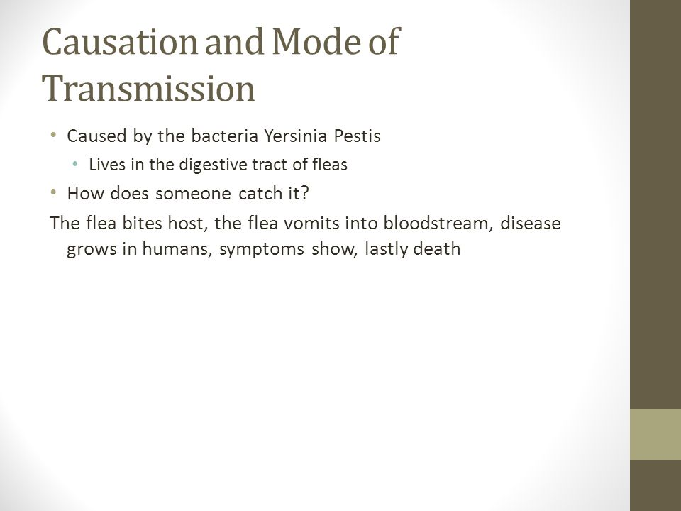 Causation and Mode of Transmission Caused by the bacteria Yersinia Pestis Lives in the digestive tract of fleas How does someone catch it? The flea bi