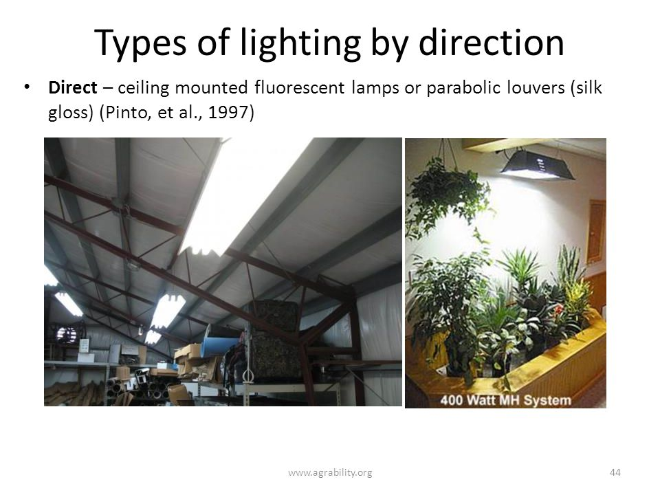 Types of lighting by direction www.agrability.org44 Direct – ceiling mounted fluorescent lamps or parabolic louvers (silk gloss) (Pinto, et al., 1997)
