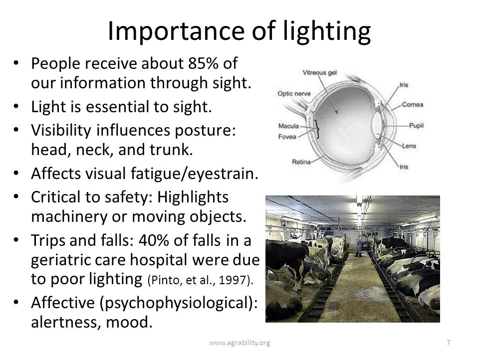 Importance of lighting People receive about 85% of our information through sight.