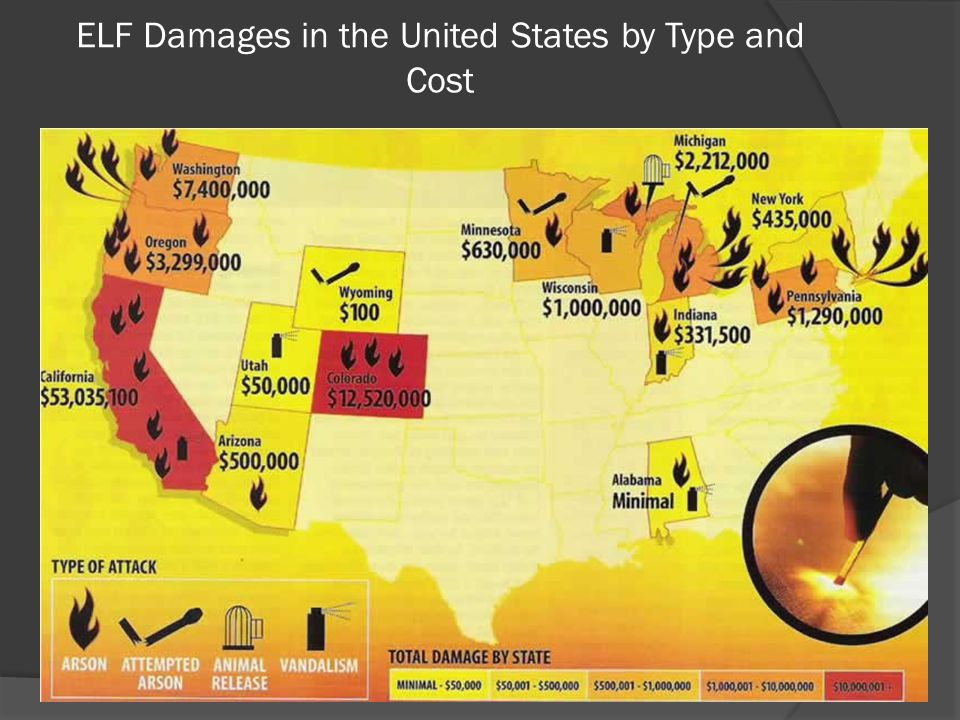 ELF Damages in the United States by Type and Cost